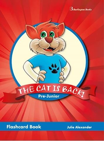THE CAT IS BACK! PRE-JUNIOR FLASHCARD BOOK